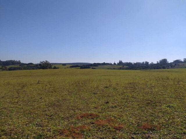 Velleda oferece linda fazenda 70 hectares 10 km da RS-040, aproveita 100% - Foto 3