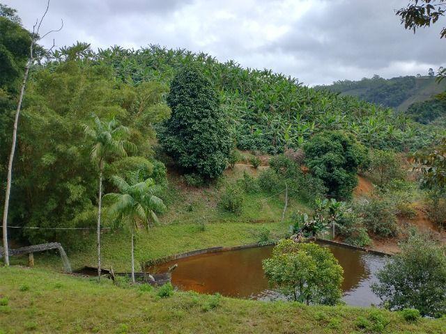 Propriedade 10 alqueires Araguaia - Foto 15