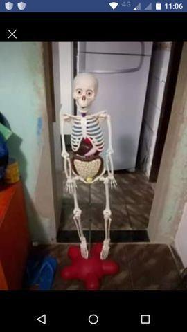 Corpo humano completo - Foto 2