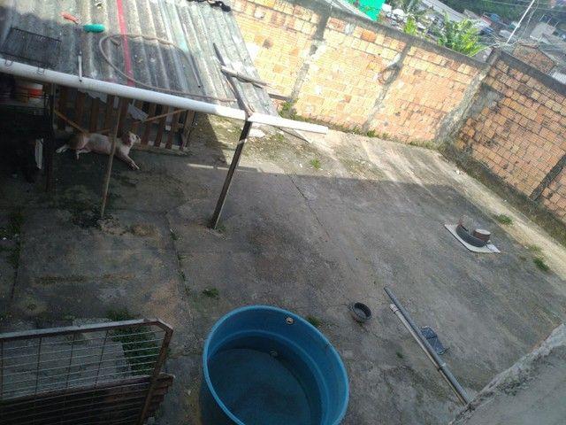 //Casa com 3 Qrts sendo uma suíte e quintal no Francisca Mendes - Foto 10