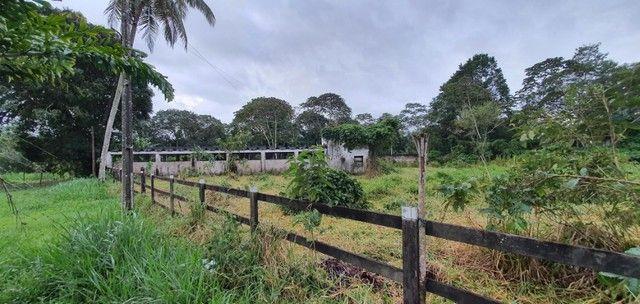 Chácara com 7 Hectares de Área em Aldeia - Foto 18