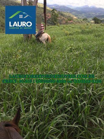 Fazenda com 70,6640 hectares (14,6 alqueires) a 11 km de Teófilo Otoni - Foto 19