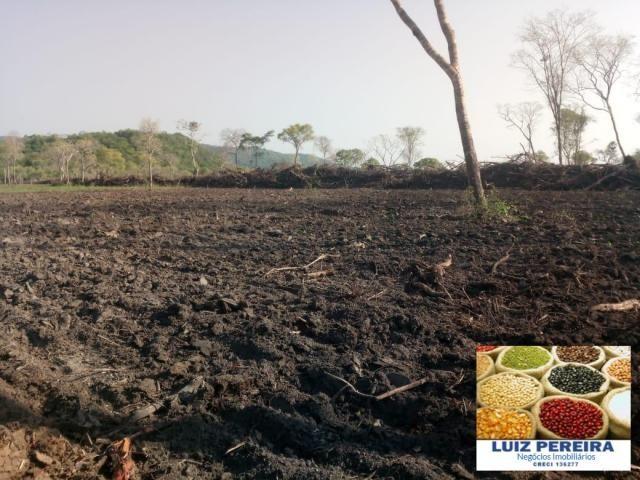 FAZENDA A VENDA EM CORUMBÁ - MS - DE 5435 HECTARES (Pecuária) - Foto 9