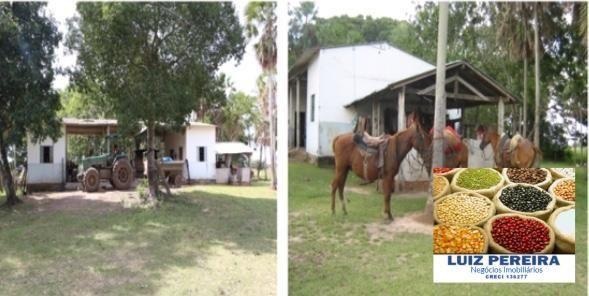FAZENDA À VENDA EM PANTANAL NHECOLÂNDIA - MS -DE 7.460 HECTARES (Pecuária) - Foto 13