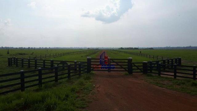 Fazenda muito bem localizada nas proximidade de Cujubim/RO - Foto 3