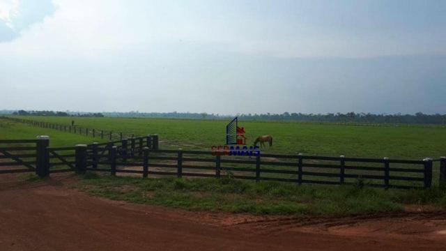 Fazenda muito bem localizada nas proximidade de Cujubim/RO - Foto 6