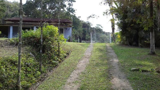 Alugo sitio em agro brasil - Foto 3