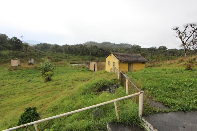 Chácara no Barro Branco em São José dos Pinhais - Foto 2