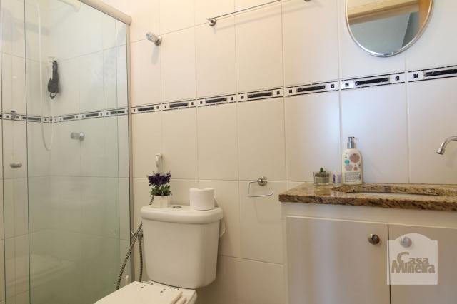 Apartamento à venda com 4 dormitórios em Calafate, Belo horizonte cod:240539 - Foto 10