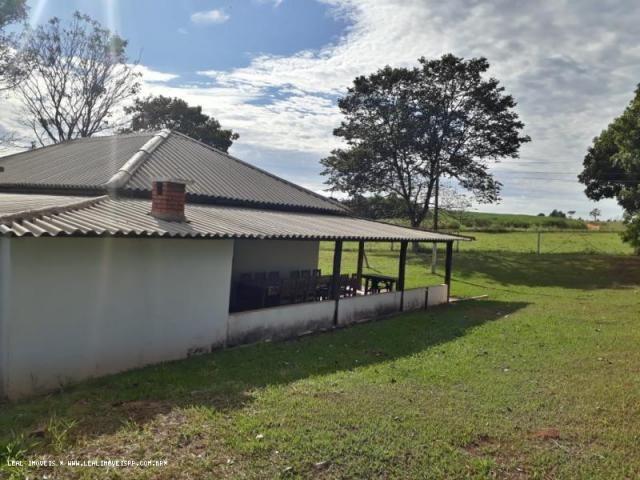 Fazenda para venda em estrela do norte, zona rural, 3 dormitórios, 1 suíte, 1 banheiro - Foto 14