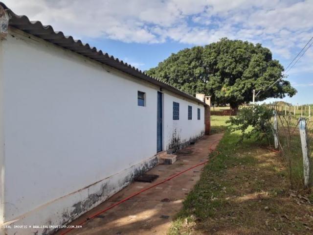 Fazenda para venda em estrela do norte, zona rural, 3 dormitórios, 1 suíte, 1 banheiro - Foto 4