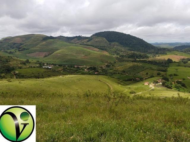 Temos Sua Fazenda de 65 hectares a 1.200 Hectares na Região de Pernambuco/PE - Foto 13