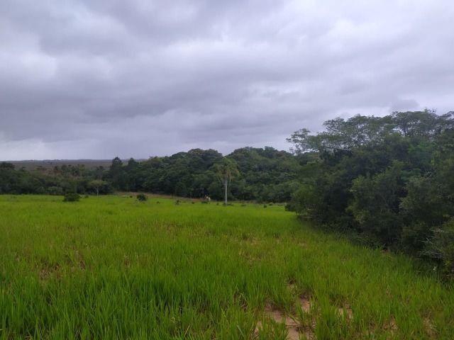 Velleda oferece lindo sítio de 1 hectare, local seguro, ac 100% em carros - Foto 2