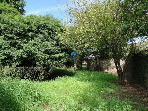 Casa à venda com 3 dormitórios em Centro, Araraquara cod:CA0125_EDER - Foto 14