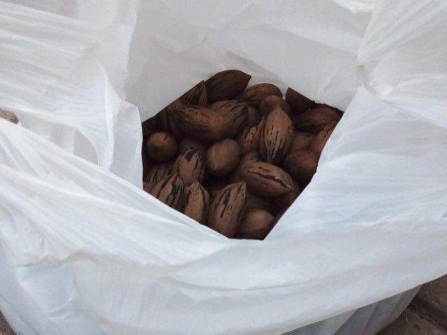 Butiás e Nozes sacos de 1kg - Foto 2