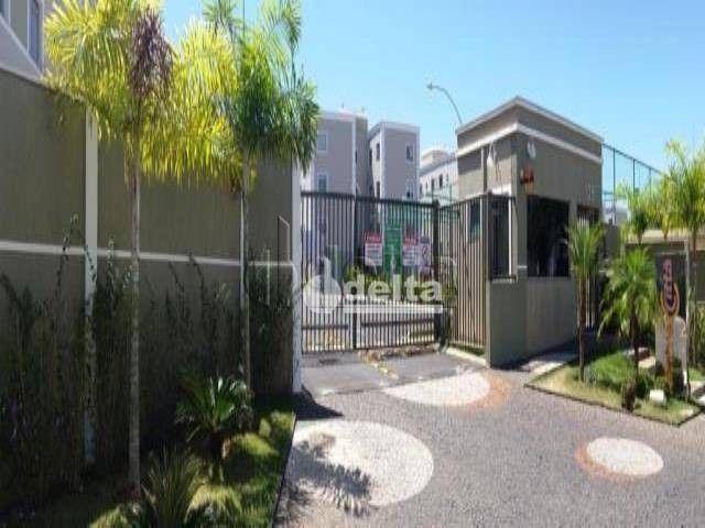 Apartamento com 3 dormitórios à venda, 60 m² por R$ 180.000,00 - Shopping Park - Uberlândi - Foto 9