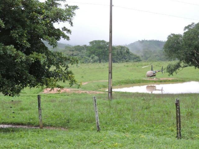 Fazenda 80 Alqueires Municipio Vila Propricio - Foto 2