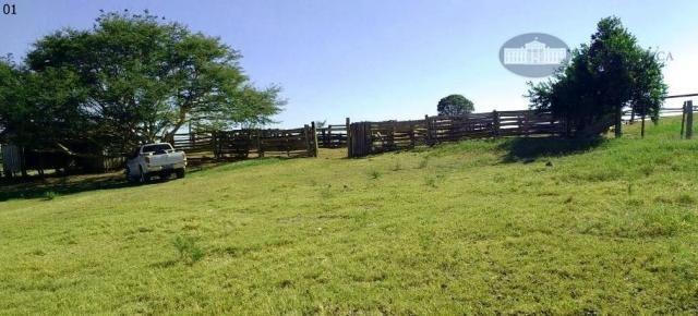 Fazenda rural à venda, Zona Rural, Santa Terezinha.