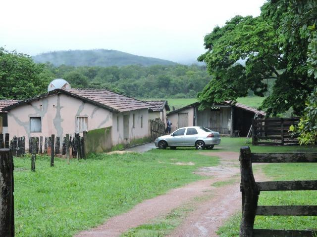 Fazenda 80 Alqueires Municipio Vila Propricio - Foto 13