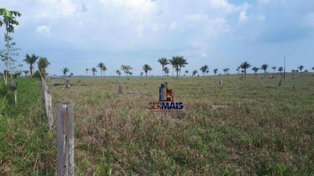 Fazenda muito bem localizada nas proximidade de Cujubim/RO - Foto 8