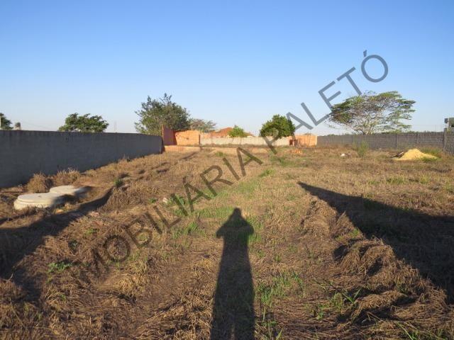 REF 762 Terreno 1289 m², todo murado, totalmente plano, Imobiliária Paletó - Foto 3