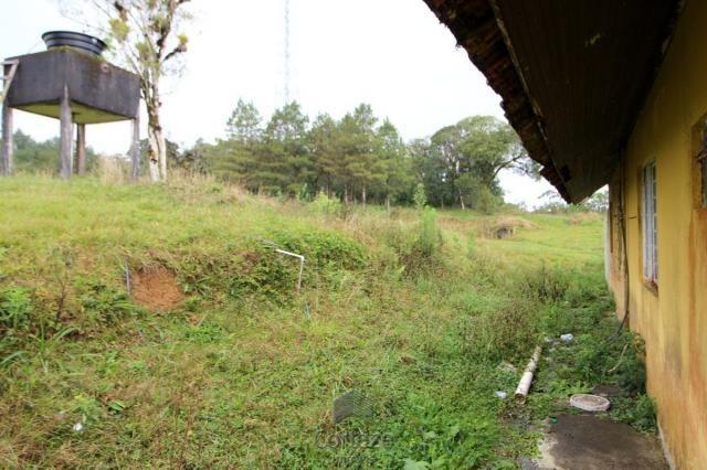 Chácara no Barro Branco em São José dos Pinhais - Foto 5