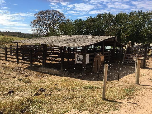 Fazenda gameleira de goias - Foto 10