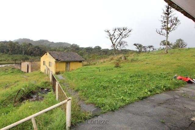 Chácara no Barro Branco em São José dos Pinhais - Foto 3