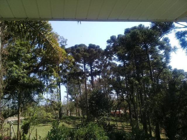 Linda Chácara 18.000 m² Doce Fino Quitandinha - Foto 11