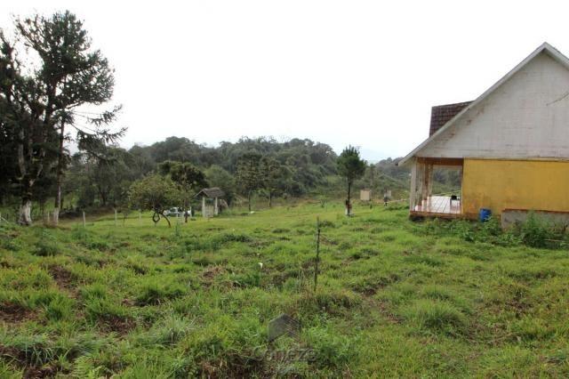 Chácara no Barro Branco em São José dos Pinhais - Foto 11