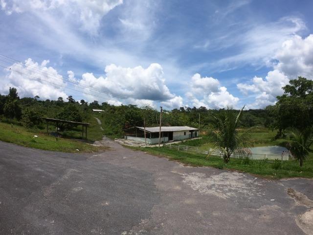 Fazenda Produtiva 1200 x 1100 com 20 tanques peixes em Rio Preto da Eva - Foto 15