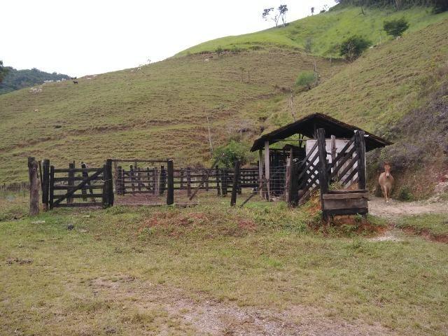 Fazenda de 150 alqueires ou seja 7.200.000 m² em Casimiro de Abreu, RJ - Foto 16