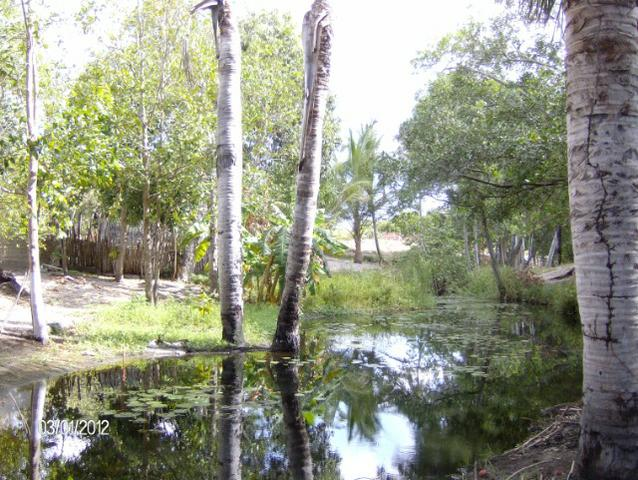 Casa de praia em Ilha Grande do Piauí próximo da praia Pedra do Sal - Foto 7