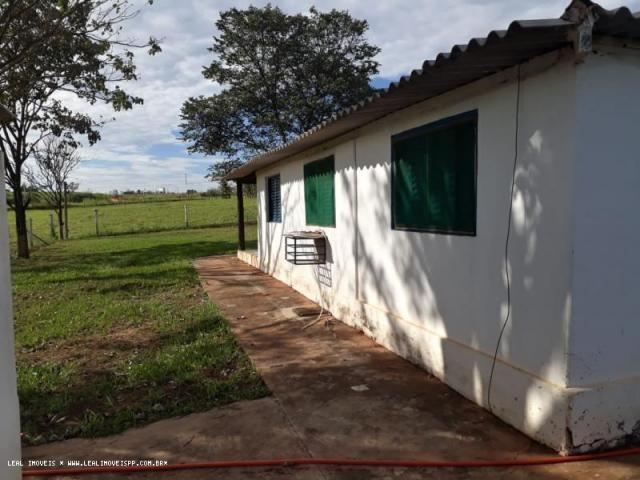 Fazenda para venda em estrela do norte, zona rural, 3 dormitórios, 1 suíte, 1 banheiro - Foto 9