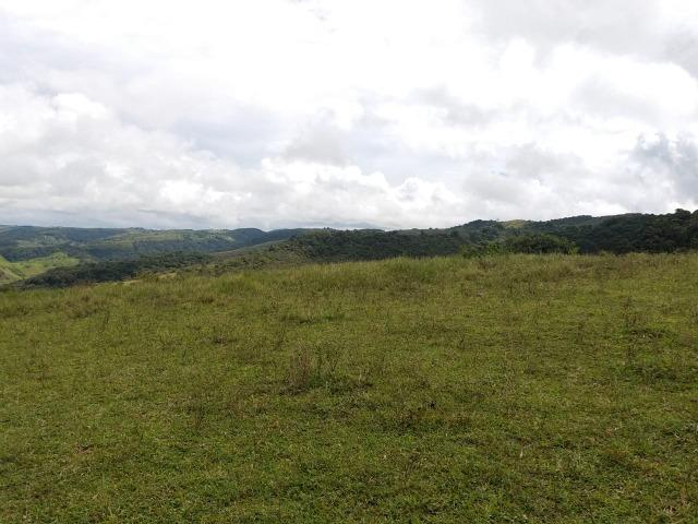 Temos Sua Fazenda de 65 hectares a 1.200 Hectares na Região de Pernambuco/PE - Foto 2