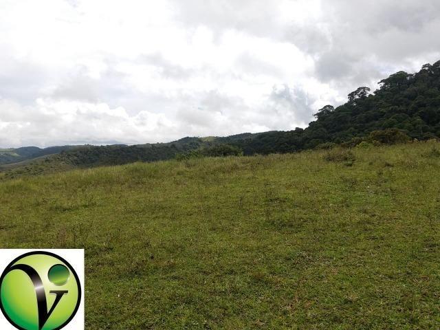 Temos Sua Fazenda de 65 hectares a 1.200 Hectares na Região de Pernambuco/PE - Foto 18