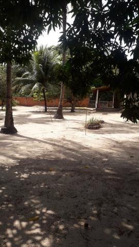Vendo um Sítio em Tibumba - Foto 9