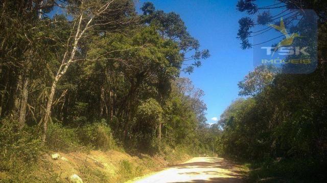 CH0407 - Chácara à venda, 2,5 Alqueires por R$ 195.000 - Zona Rural - Quitandinha/PR - Foto 11