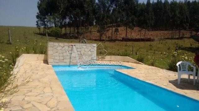 Sítio para alugar com 4 dormitórios em Carafá, Votorantim cod:43232 - Foto 13