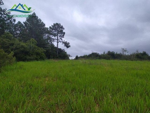 Velleda oferece lindo sítio de 1 hectare, local seguro, ac 100% em carros - Foto 3