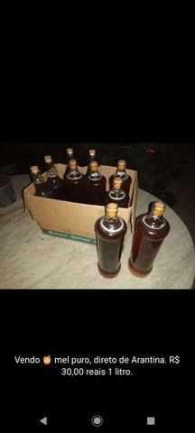 Vendo mel puro - Foto 3