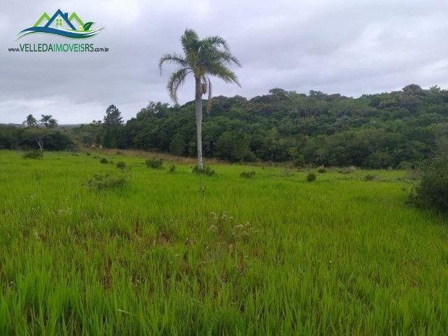 Velleda oferece lindo sítio de 1 hectare, local seguro, ac 100% em carros - Foto 4