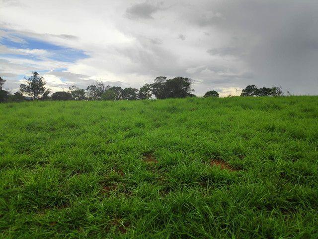 Terreno rancho - Foto 6