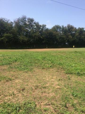 Ótimo Sítio 1,6 Hectares na Área Rural de Olinda, Aceito Automóvel ou imóvel - Foto 6