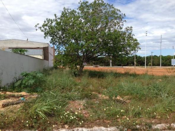 Lote comercial 103 S