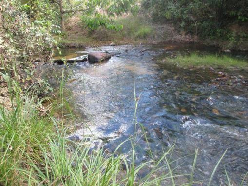 Fazenda Ponte Alta - TO - Foto 2