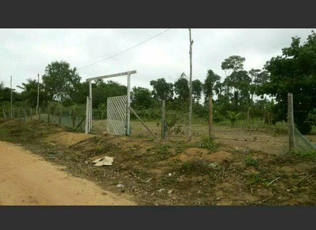 Terreno em Belterra na comunidade santa Luzia