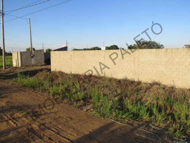 REF 762 Terreno 1289 m², todo murado, totalmente plano, Imobiliária Paletó - Foto 11