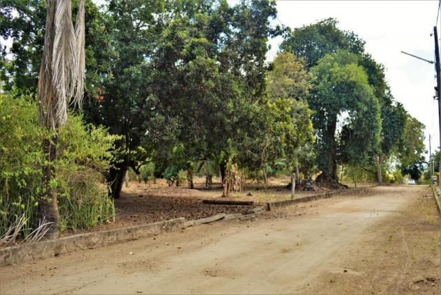 Terreno à venda em Novo, Carpina cod:TE09W - Foto 8