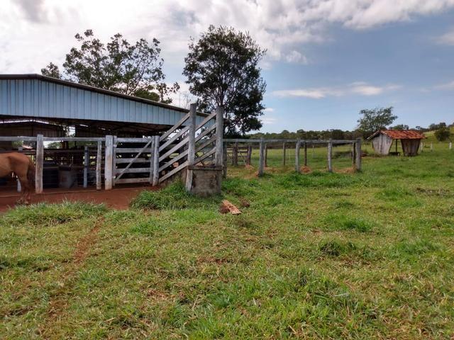 Fazenda, terra boa e pronta! - Foto 5